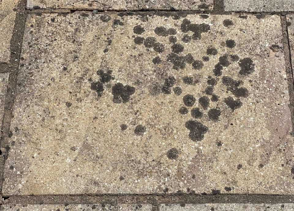 How To Remove Black Spots From Patio
