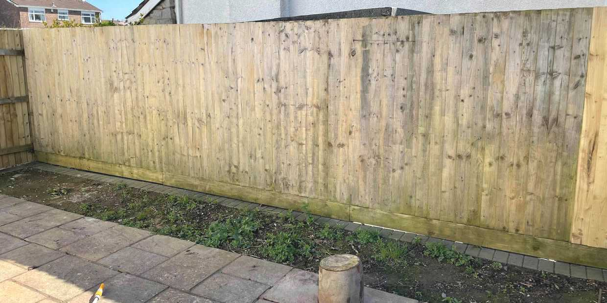 clean green algae from wooden fence