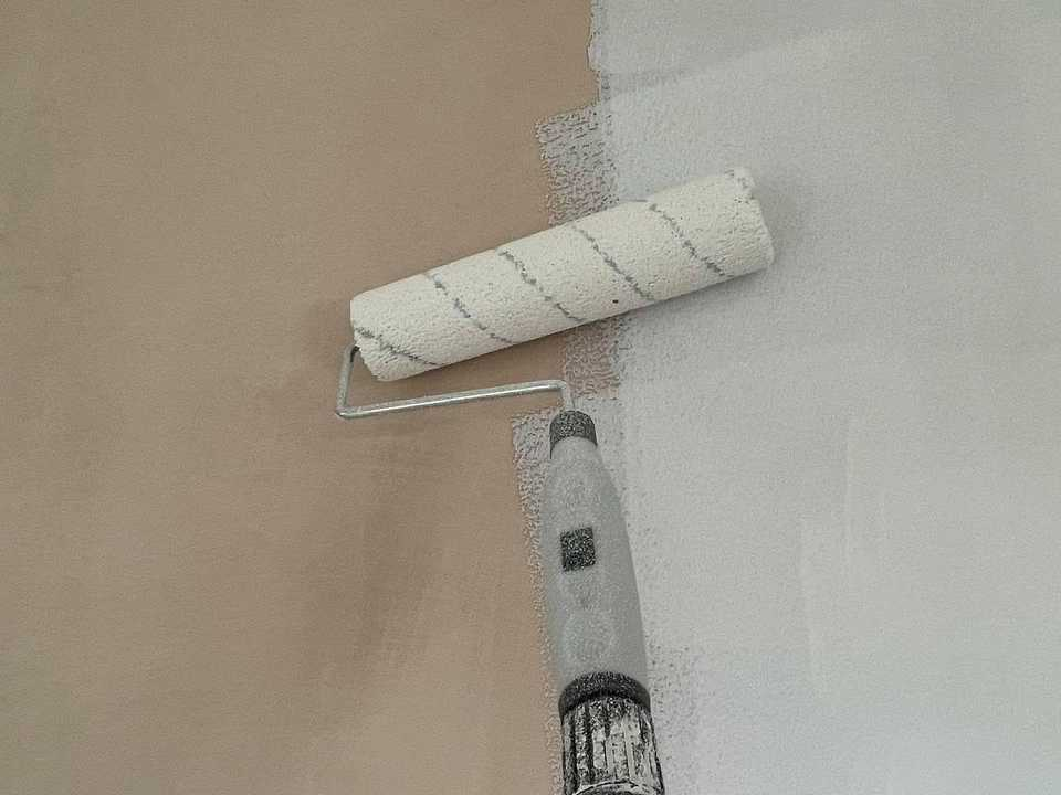how to paint bare plaster